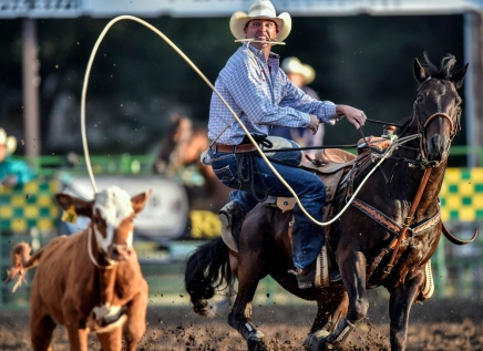 Scenes from the last day of the 45th Annual Corn Palace Stampede Rodeo at Horseman's Sports Arena on Sunday in Mitchell. (Matt Gade/Republic)