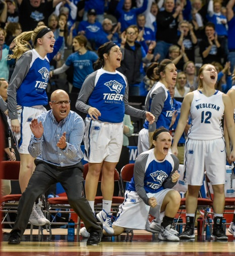 Dakota Wesleyan Head Coach Jason Christensen and the Tigers bench celebrate a basket late during the first round of the NAIA Division II women's national tournament against Haskell Indian Nation University on Wednesday morning at the Tyson Events Center in Sioux City, Iowa. (Matt Gade/Republic)