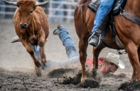 Carter Kennedy, of Beresford, slides in the dirt after failing to hang onto the steer while steer wrestling during the Burke Stampede Rodeo on Saturday, July 16 in Burke.