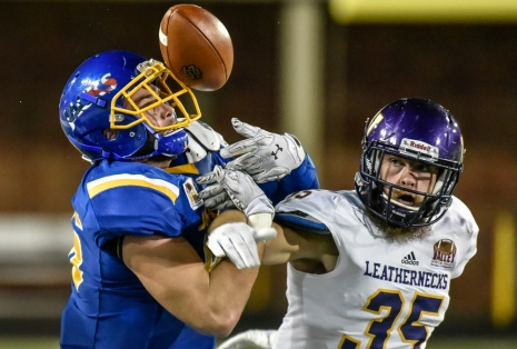 South Dakota State University tight end Dallas Goedert (86) keeps his eye on the ball while battling with Western Illinois linebacker Adam Brott (35) as Goedert would make the catch and score a touchdown on the play in the second half of the Jackrabbits game against the Leathernecks in a Missouri Valley Conference game on Saturday, Oct. 1 at Dana J. Dykhouse Stadium in Brookings.
