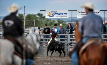 Lane Roettele, of Aberdeen, comes out of the gate competing in the bull riding competition during the Wessington Springs Foothills Rodeo at the Jerauld County 4-H Grounds.