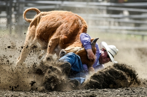 Kody Woodward, of Dupree, competes in the steer wrestling during the Wessington Springs Foothills Rodeo at the Jerauld County 4-H Grounds.