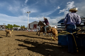 Ron Skovly, of Aurora, races out of the pen during the calf roping competition during the Wessington Springs Foothills Rodeo at the Jerauld County 4-H Grounds.