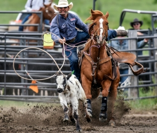 Justin Schofield, of Wessington Springs, competes in the calf roping event during the Wessington Springs Foothills Rodeo at the Jerauld County 4-H Grounds.