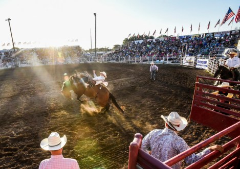 Tate Schwagler, of Mandan, N.D., competes in the bareback riding competition to kick-off the first night of the Corn Palace Stampede Rodeo on Thursday night at Horseman's Sports Arena in Mitchell.