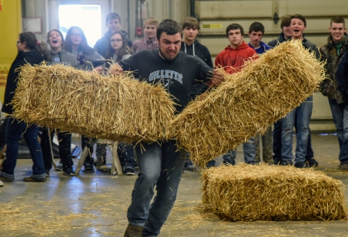 Wessington Springs senior Jordan Hines carries a pair of hay bales while competing in the Ag Olympics in the Wessington Springs Ag building back in February as part of National FFA Week. (Matt Gade / Republic)