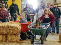 At left, Wessington Springs juniors Ryile Stevens, pushing, and Isaac Klousek try to catch up with seniors Keah Munsen, pushing, and Abby Von Eye while competing in the wheel barrow races as part of the Ag Olympics in the Wessington Springs Ag building back in February as part of National FFA Week. (Matt Gade / Republic)